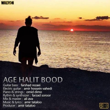 Download Amir Tataloo's new song called Age Halit Bood