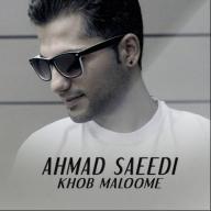 دانلود آهنگ جدید احمد سعیدی به نام خب معلومه