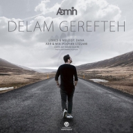 Download Aamin's new song called Delam Gerefteh