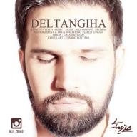 Download Ali Zibaei's new song called Deltangiha
