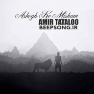 Download Amir 's new song called Ashegh Ke Misham