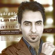 Download Amin Habibi's new song called Ashegh Nasho