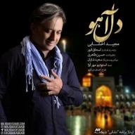 Download Majid Akhshabi's new song called Dele Ahoo
