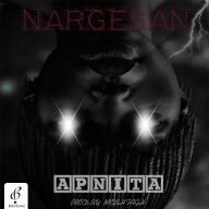 دانلود آهنگ جدید آپنیتا به نام نرگسان