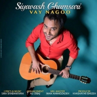 Download Siavash Ghamsari 's new song called Vay Nagoo