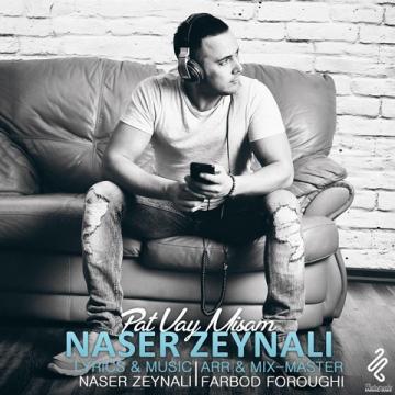 دانلود آهنگ جدید ناصر زینلی به نام پات وایمیستم