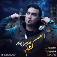 Download Alireza Roozegar's new song called Gandom