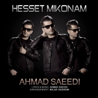 Download Ahmad Saeedi 's new song called Hesset Mikonam