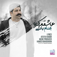 Download Behnam Bani's new song called Ashegham Karde