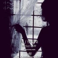 Download Ali Yasini 's new song called  Mesle Barf