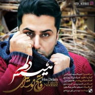 Download Fateh Nooraee's new song called Hiss Delam