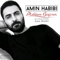 Download Amin Habibi 's new song called Mohkam Begiram