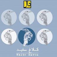 گروه «دال» آلبوم «کلاغ سفید» را منتشر میکند