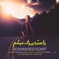 Download Mohammadreza Hedayati's new song called Vasat Parvane Misham