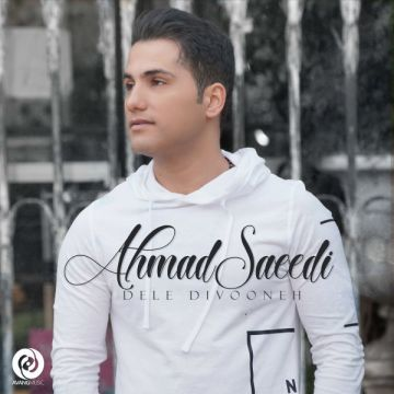Download Ahmad Saeedi's new song called Dele Divooneh