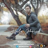 Download Nadim's new song called Hale Gharib