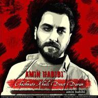 Download Amin Habibi's new song called Cheshmato Kheili Doost Daram
