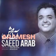 Download Saeed Arab's new song called Aramesh