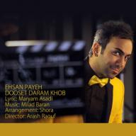 Download Ehsan Payeh's new song called Dooset Daram Khob