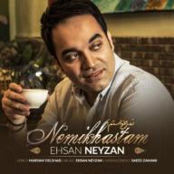 Download Ehsan Neyzan's new song called Nemikhastam