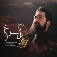 Download Ali Zandvakili 's new song called Gole Sorkh