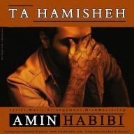 Download Amin Habibi's new song called Ta Hamisheh