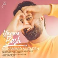 Download Mohammad Alizadeh's new song called Yaram Bash