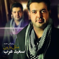 Download Saeed Arab's new song called (Mesle Baroon (Remix