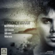 Download Masoud Saeidi's new song called Divoone Manam