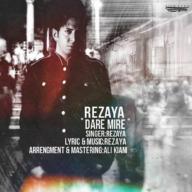 Download Rezaya's new song called  Dare Mire