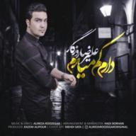 Download Alireza Roozegar's new song called Daram Kam Miaram