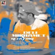 Download Reza Shiri's new song called Deli Mikhamet