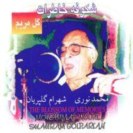 Download Mohammad Nouri's new song called Morghake Ziba