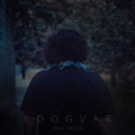 Download Sina Hejazi's new song called Soogvar