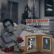Download Morteza Pashaei's new song called Nafas Bekesh