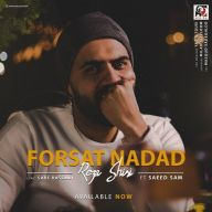 Download Reza Shiri's new song called Forsat Nadad