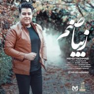 Download Mehdi Yaghmaei's new song called Ziba Sanam