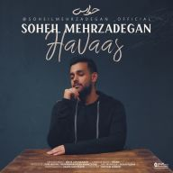 Download Soheil Mehrzadegan's new song called Havaas