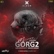 Download Amir Tataloo Ft Sohrab MJ's new song called Gorg 2
