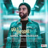 Download Soheil Mehrzadegan's new song called Dele Divoone