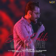 Download Saman Jalili's new song called Tarafdar