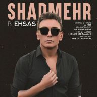 Download Shadmehr Aghili's new song called Bi Ehsas