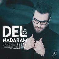 Download Garsha Rezaei's new song called Del Nadaram