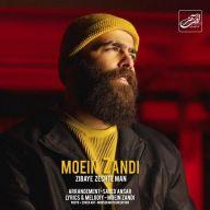 Download Moein Z's new song called Zibaye Zeshte Man
