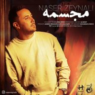 Download Naser Zeynali's new song called Mojasameh
