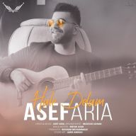 Download Asef Aria's new song called Hale Delam