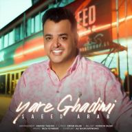 Download Saaed Arab's new song called Yare Ghadimi