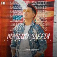 Download Masoud Saeedi's new song called Jadeh Chaloos