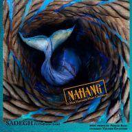 Download Sadegh Ft Pedram Azad's new song called Nahang To Hoz Hamoon Mahi Ghermeze
