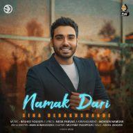 Download Sina Derakhshande's new song called Namak Dari